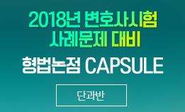 2018년 변시 사례문제 대비 형법논점 CAPSULE (이인규 교수님)