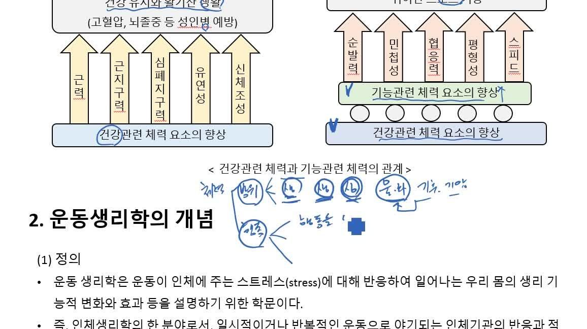 운동생리학 종합반(이론+기출문제)