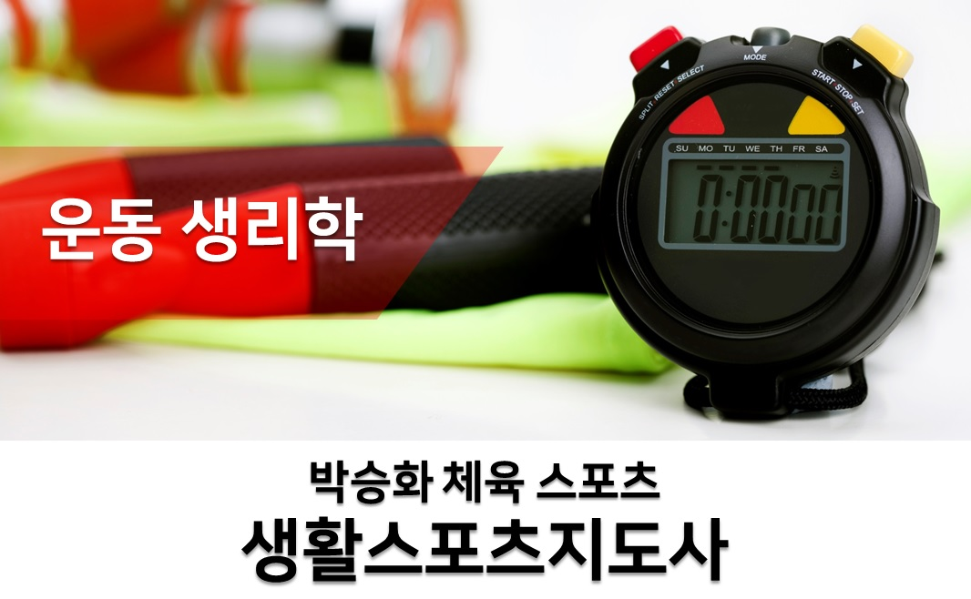 2019년 대비 2급 전문/생활스포츠지도사 [운동생리학]