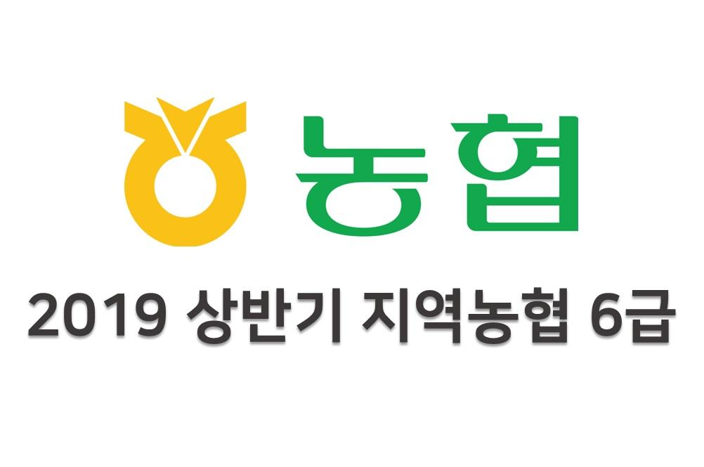 2019 상반기 지역농협 6급 NCS 직무능력평가