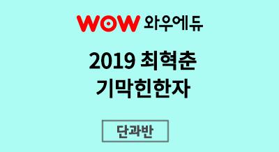 2019 최혁춘 감각국어 기막힌 한자