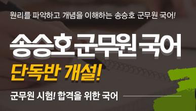 [기본이론] 2019 송승호 군무원 국어 기본이론 군무원국어 단독반