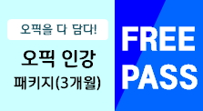 OPIc 프리패스(3개월) _ 기본과정+돌발+롤플레이+이슈(총 180강)